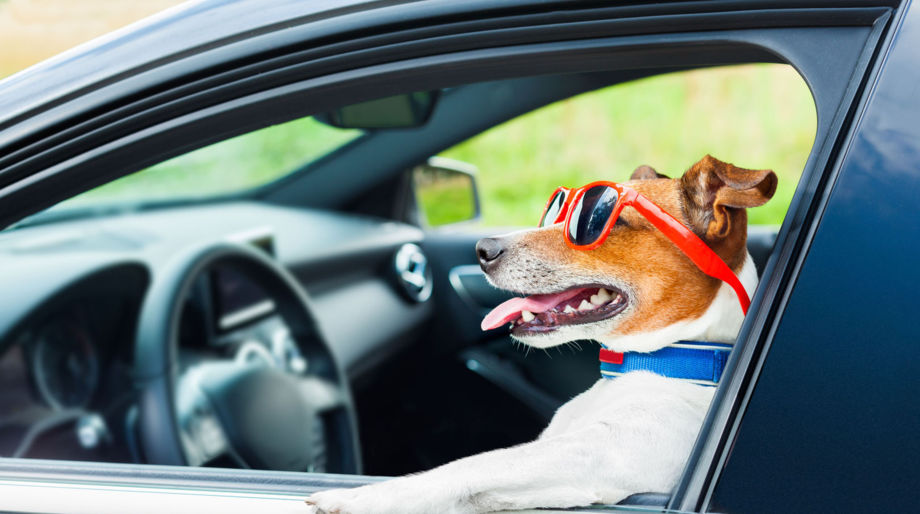 wie viele fahrstunden sind pflicht 2020